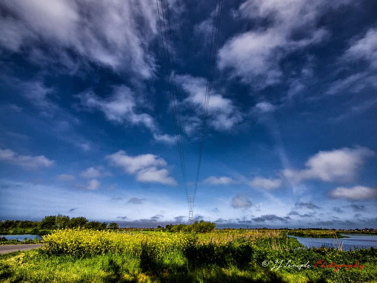 Technology and Nature - JJ Semple photography